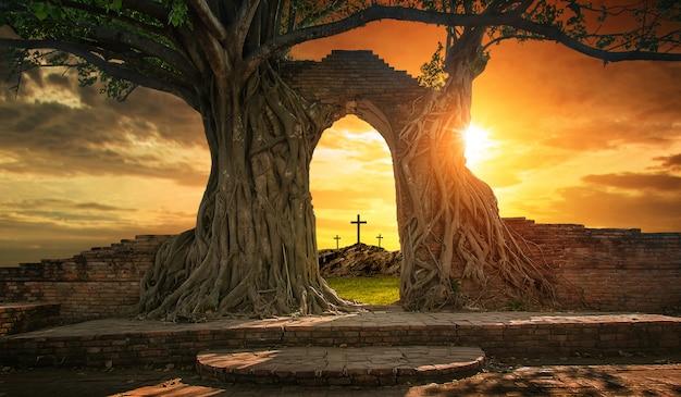 Pusty grób z trzema krzyżami Premium Zdjęcia