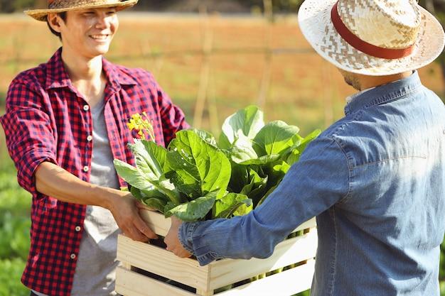 Rano Dwóch Młodych Mężczyzn Wysyła Drewniane Skrzynie Pełne świeżych Warzyw. Premium Zdjęcia