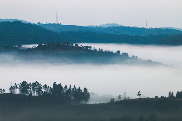 Rano mgliste wzgórza Premium Zdjęcia