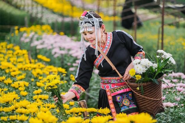 Rdzenni Mieszkańcy Północnej Tajlandii I Kolekcja Chryzantem W Ogrodzie Premium Zdjęcia