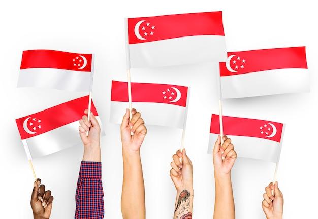 Ręce macha flagami singapuru Darmowe Zdjęcia