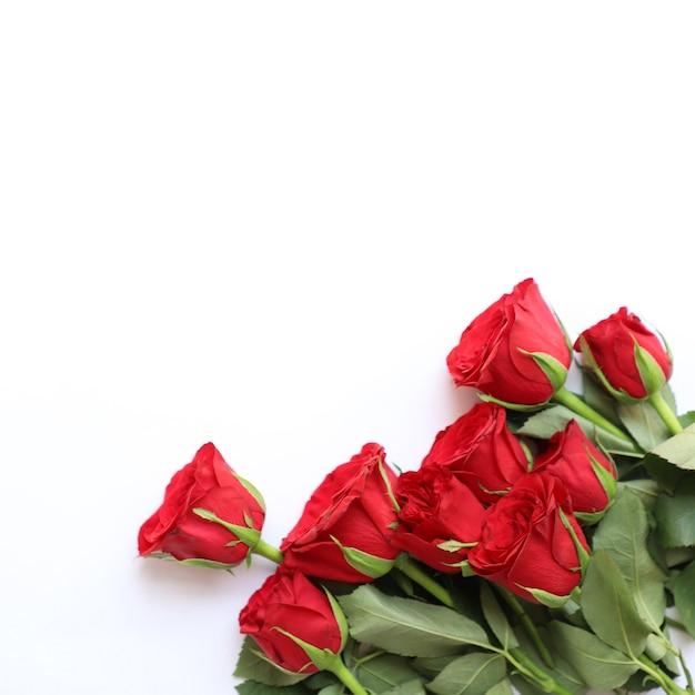 Red rose uniwersalne tło na rocznicę, ślub, urodziny lub inne uroczystości Darmowe Zdjęcia