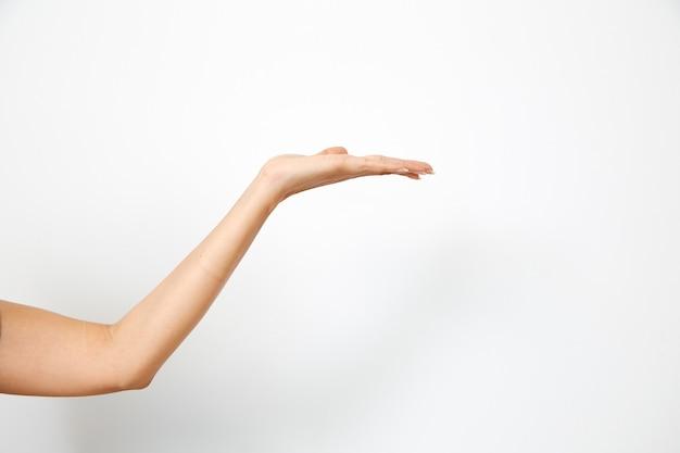 Ręka Kobiety Trzyma Coś Premium Zdjęcia