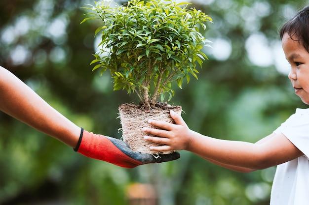 Ręka Rodziców W Rękawiczce Dając Młode Drzewo Dla Dziecka Do Sadzenia Razem Premium Zdjęcia