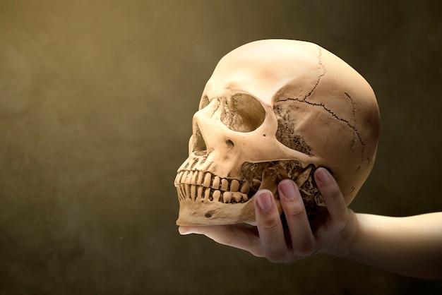 Ręka trzyma ludzką czaszkę Premium Zdjęcia