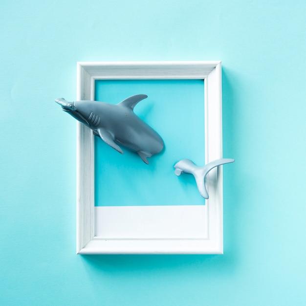 Rekiny Zabawki Pływające W Ramce Darmowe Zdjęcia
