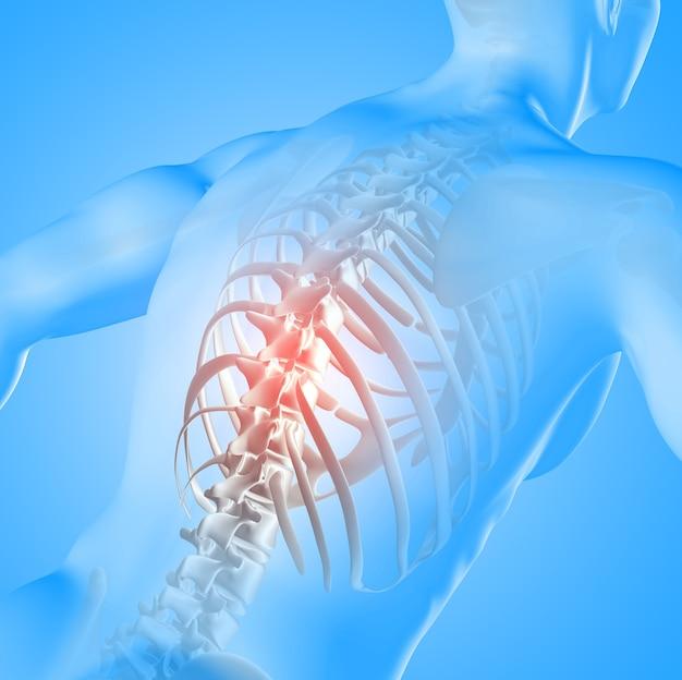 Renderowanie 3d Obrazu Medycznego Postaci Męskiej Z Podświetleniem Kręgosłupa Darmowe Zdjęcia