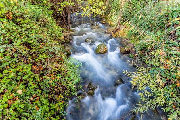 River Majaceite Premium Zdjęcia
