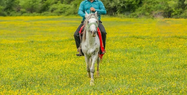 Robotnik rolny jeździ konno w strefie gospodarstwa z zieloną trawą i żółtymi kwiatami Darmowe Zdjęcia