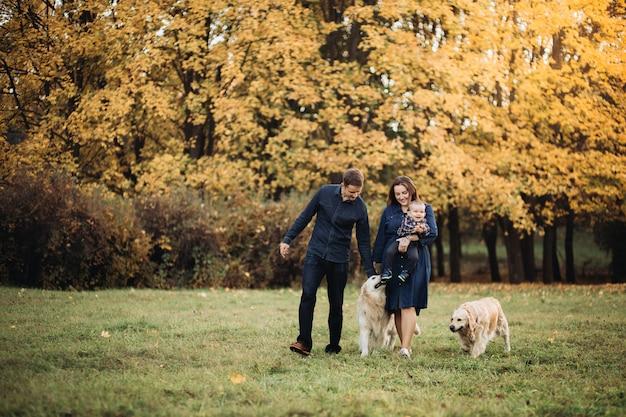 Rodzina z dzieckiem i dwoma golden retrieverami w jesiennym parku Premium Zdjęcia