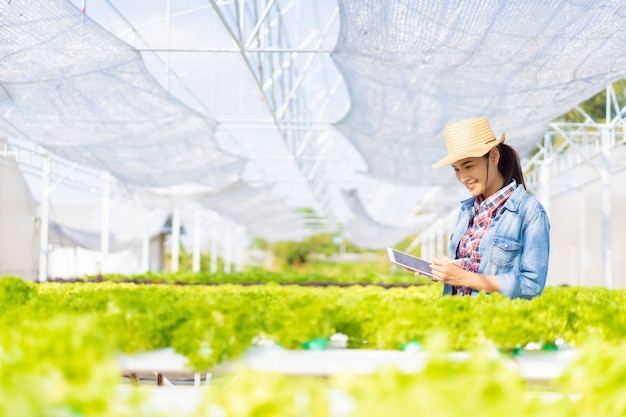 Rolnicy Rejestrują Dane Na Tabletach Na Farmie Sałatek Z Warzywami Hydroponic. Premium Zdjęcia