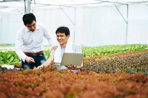 Rolnik I Właściciel Sprawdzający Produkt Rolny I Warzywa Za Pomocą Komputera Premium Zdjęcia