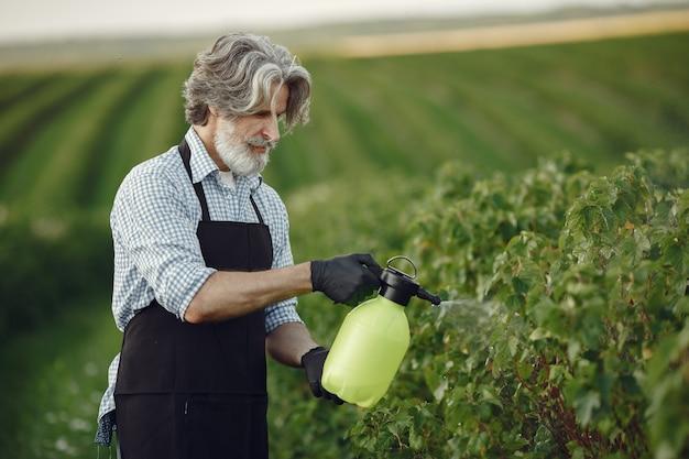 Rolnik Opryskujący Warzywa W Ogrodzie Herbicydami. Mężczyzna W Czarnym Fartuchu. Darmowe Zdjęcia