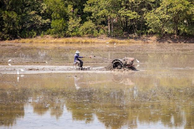 Rolnik Prowadzi Pług, Aby Uprawiać Ryż Na Swoich Polach Ryżowych Premium Zdjęcia