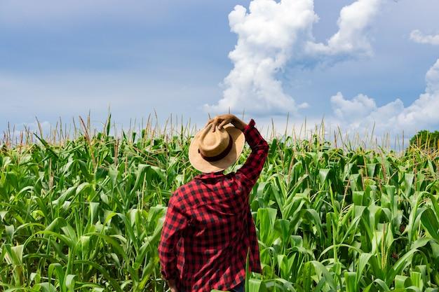 Rolnik z kapeluszem patrząc na pole plantacji kukurydzy Premium Zdjęcia