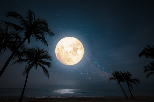 Romantyczna Nocna Scena, Piękna Tropikalna Plaża Z Gwiazdami I Pełnią Księżyca Na Nocnym Niebie. Premium Zdjęcia