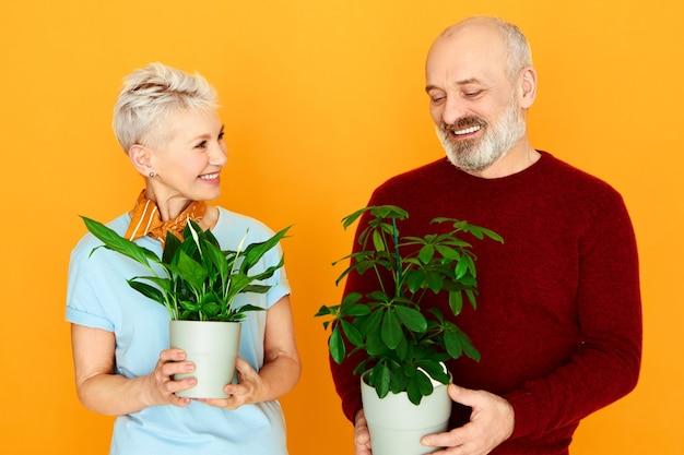 Rośliny Doniczkowe, Zieleń I Koncepcja Pielęgnacji. Portret ślicznego Starszego Małżeństwa Europejskiej Pary Szczęśliwa Kobieta I Wesoły Mężczyzna Pozowanie Na Białym Tle Trzymając 2 Doniczki Z Zielonymi Roślinami, Karmiąc Je Razem Darmowe Zdjęcia