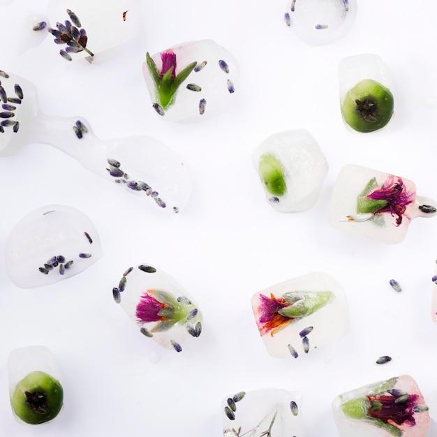 Rośliny i jagody w kostkach lodu Darmowe Zdjęcia