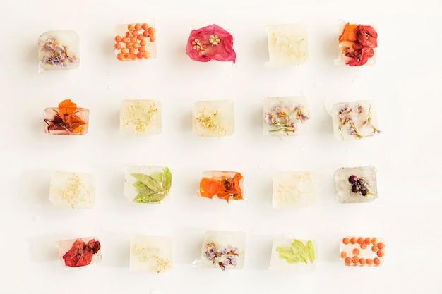 Rośliny, jagody i kwiaty w kostkach lodu Darmowe Zdjęcia