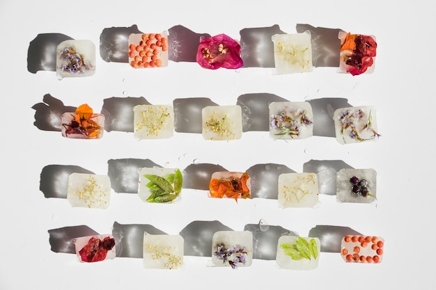 Rośliny, kwiaty i jagody w kostkach lodu Darmowe Zdjęcia