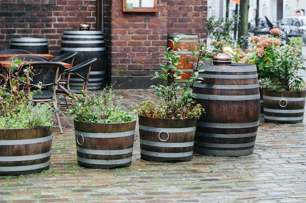 Rośliny uliczne w drewnianych koszach i beczkach Darmowe Zdjęcia