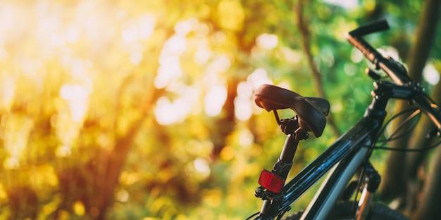 Rower górski w lesie przy zmierzchem. Premium Zdjęcia