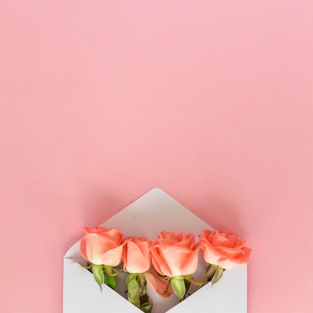Różani Kwiaty W Kopercie Na Menchia Stole Darmowe Zdjęcia
