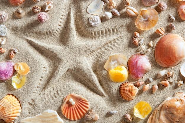 Rozgwiazda Plażowa Z Białym Piaskiem Drukuje Wiele Muszli Małży Premium Zdjęcia