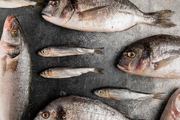 Różne Srebrne Ryby Z Owoców Morza Leżące Płasko Darmowe Zdjęcia
