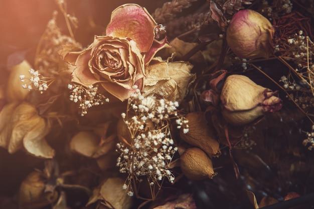 Różne Suszone Kwiaty Uchwycone Przez Szybę Premium Zdjęcia