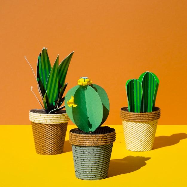 Różnorodne Kaktusy Z Papieru Origami W Doniczkach Darmowe Zdjęcia