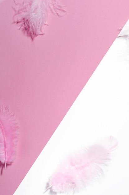 Różowe Białe Tło Z Kolorowych Piór Widok Z Góry. Premium Zdjęcia