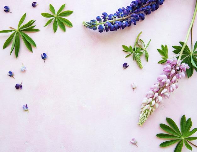 Różowe i fioletowe kwiaty łubinu Premium Zdjęcia