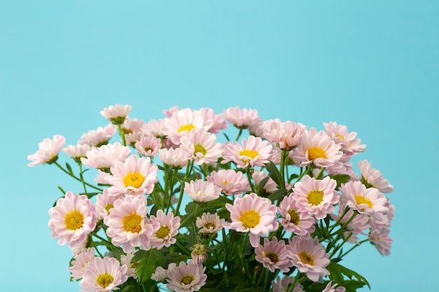 Różowe Kwiaty Na Minimalistycznym Kolorowym Tle. Koncepcja Tle Kwiatów Premium Zdjęcia