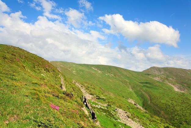Różowe Kwiaty Rododendronów Na Letnim Zboczu Góry I Chmura Na Szczycie Wzgórza (ukraina, Karpaty) Premium Zdjęcia