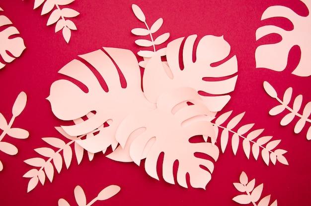 Różowe liście i monstera widok z góry Darmowe Zdjęcia