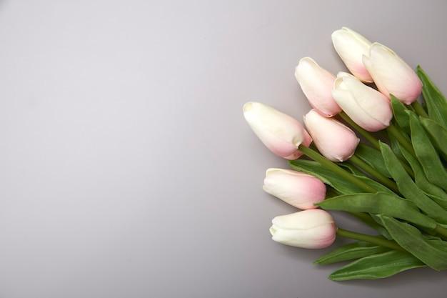 Różowe Tulipany Na Międzynarodowy Dzień Kobiet Premium Zdjęcia