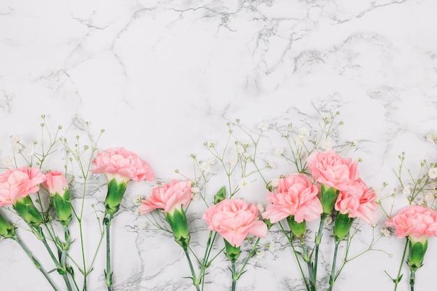Różowi goździka i łyszczec kwiaty na marmurze textured tło Darmowe Zdjęcia