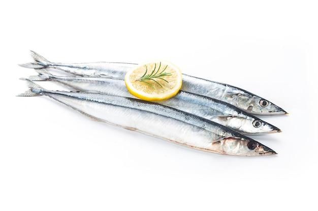 Ryba Saury Premium Zdjęcia