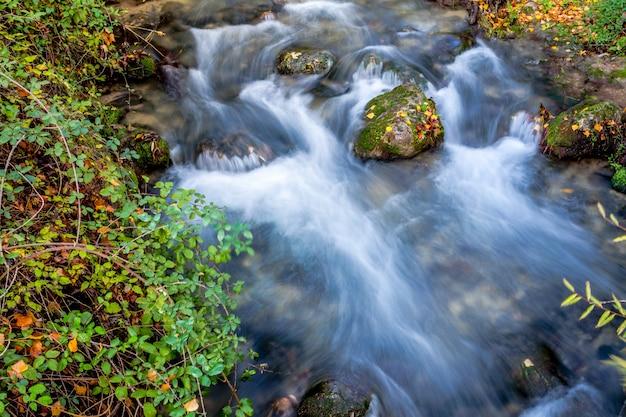 Rzeka Majaceite Premium Zdjęcia