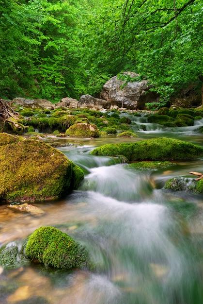 Rzeka W Górach Premium Zdjęcia