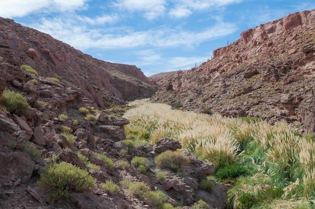 San Pedro De Atacama Chile Darmowe Zdjęcia