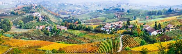 Sceniczna Przyroda. Złote Winnice Piemontu. Słynny Region Winiarski We Włoszech Premium Zdjęcia