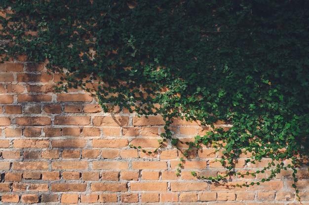 Ściana jest z cegły, a następnie pomalowana na biało Premium Zdjęcia