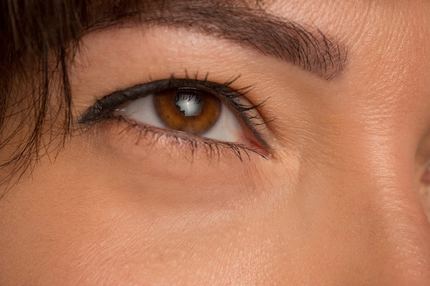 Ścieśniać Brązowe Oczy Na Twarzy Młodej Pięknej Dziewczyny Kaukaski Darmowe Zdjęcia