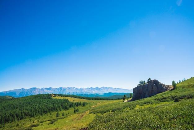 Ścieżka do gigantycznych gór przez zieloną dolinę i las. łąka z bogatą roślinnością wyżynną i niezwykłym kamiennym kamieniem z cedrami. drzewa iglaste w słońcu. niesamowity krajobraz górski. Premium Zdjęcia