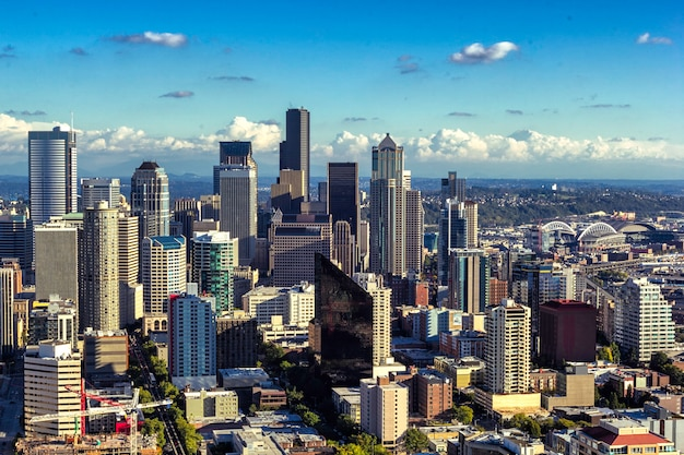 Seattle W Centrum Widok, Miasto Linia Horyzontu Na Słonecznym Dniu Premium Zdjęcia
