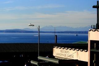Seattle, Westcoast, Góry Darmowe Zdjęcia