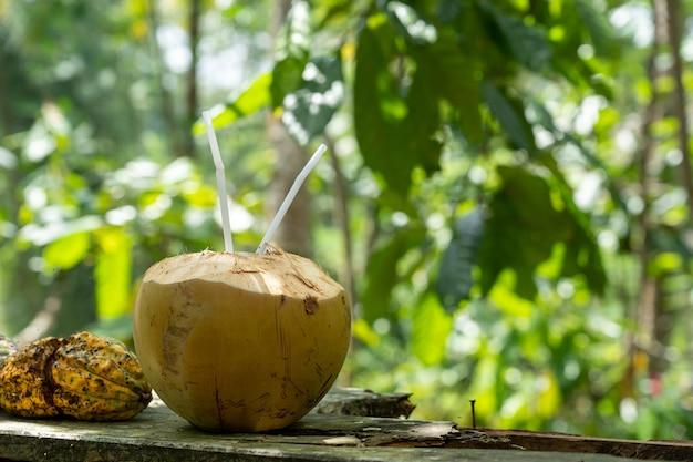 Selektywne Fokus Strzał Wody Kokosowej Darmowe Zdjęcia