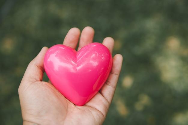 Serce W Rękach Serca Premium Zdjęcia